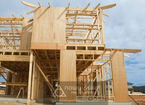 dom_szkieletowy_budowa